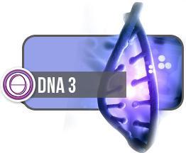 ThetaHealing® DNA3 - in Illingen/Saarland